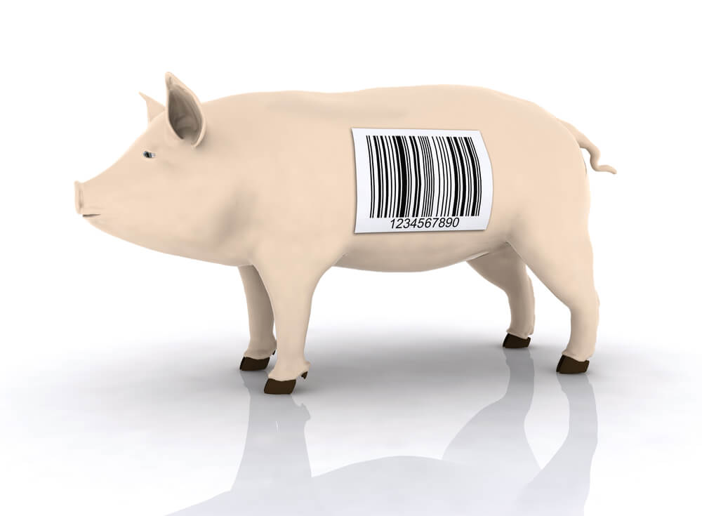 trazabilidad-alimentaria-ventas-jamones-2